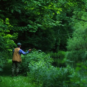 fishing-at-River-Test-Hampshire-England